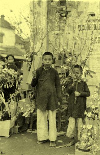 Hai anh em đi bán hoa đào ở chợ Tết