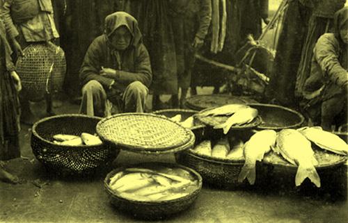 Hàng bán cá