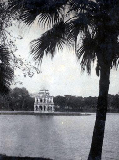 013.Bờ hồ Gươm với những cây cọ, cây dừa