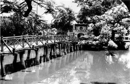 017,Cầu Tê Húc