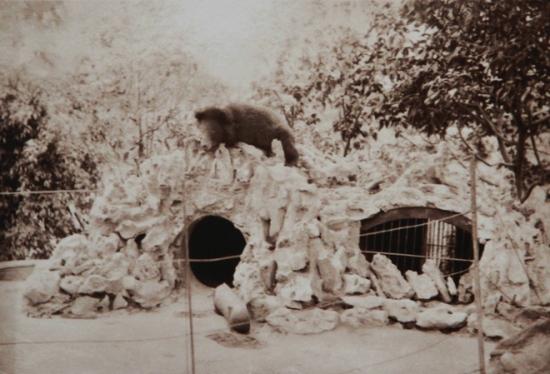 Với một đô thị chuẩn Pháp thì một không gian sinh thái nhằm cân bằng cuộc sống đô thị hóa là nhu cầu thiết yếu. Công viên Bách Thảo được xây dựng, trồng nhiều loại cây, nuôi muông thú. Chỗ ở của Rousseau là tòa nhà không lớn nhưng có nhiều cây cối bao quanh. Tới những năm 1901-1907, phủ toàn quyền mới được xây dựng.