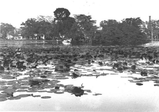 001.Hồ Gươm, nhìn về phía đền Ngọc Sơn và đền Bà Kiệu