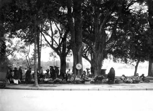 010.Chợ Hoa ven Hồ Gươm