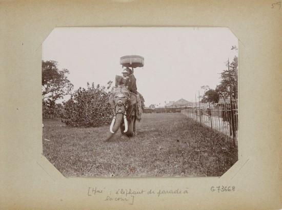 010.Hue (1896-1900) – éléphant de parade à la cour