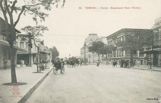 Khoảng 1904. Sự biến mất của hàng cây trước KS Metrople được giải thích bằng cơn bão 7/06/1903 (xem ảnh). Tuyến phố Tràng Tiền không còn cây xanh.