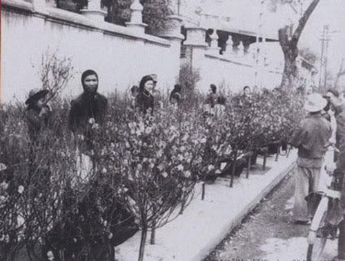 011.Chợ hoa Hàng Lược thế kỷ XX