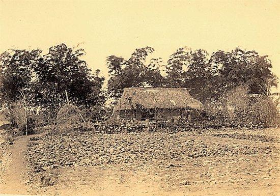 020.Một xóm làng  an-nam-mít