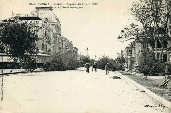 3004. Đoạn đường Henri Riviere (phố Ngô Quyền) trước khách sạn Metropole bị che khuất vì cây đổ