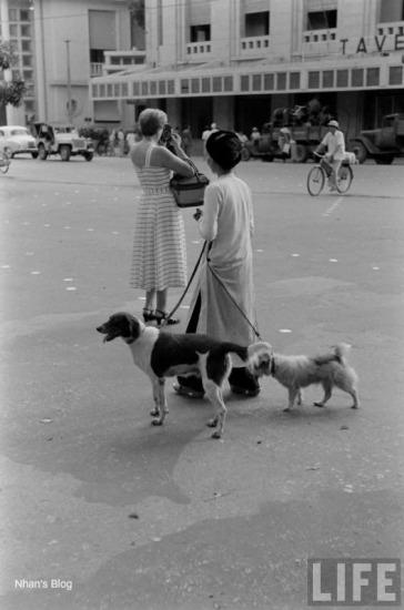 Không khí hoảng hốt trước ngày Việt Minh vào tiếp quản Hà Nội. Với tâm trạng của kẻ ra đi, người phụ nữ Pháp này cố ghi vào trí nhớ những hình ảnh thân thuộc của thành phố ngày mai sẽ trở thành quá khứ. Ảnh trích từ loạt ảnh Last Days of Hanoi của Howard Sochurek.