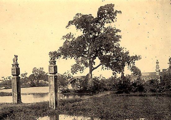 061.Phong cảnh tượng trưng trên dòng sông Hồng gần Hà Nội