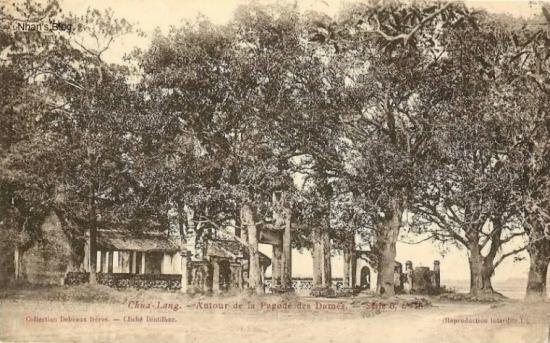 Chùa nằm trên khu đất rộng, cây cối um tùm, xưa được coi là cảnh chùa đẹp và u nhã nhất Thăng Long