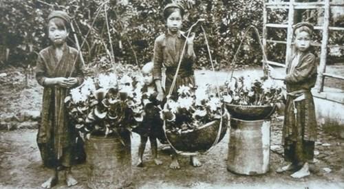 Thiếu nữ Hà Nội xưa bên gánh hàng hoa.