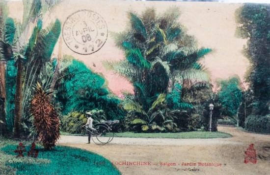 Năm 1864, đề đốc Pháp De La Grandière ký quyết định cho xây dựng vườn Bách thảo Sài Gòn. Vườn được nới rộng dần đến năm đến 33 hecta năm 1927. Sau hơn 130 năm tồn tại, nơi đây trở thành một vườn thú lớn mang tên Thảo Cầm Viên với 590 đầu thú thuộc 125 loài, thực vật có 1800 cây gỗ thuộc 260 loài, 23 loài lan nội địa, 33 loài xương rồng, 34 loại bon sai... Bên trong Thảo Cầm Viên còn có hai công trình kiến trúc đặc sắc khác đó là Đền thờ vua Hùng và Bảo tàng Lịch sử Việt Nam.