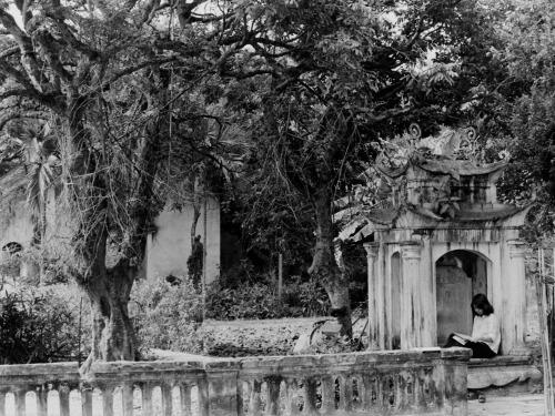 011. Đọc sách bên đền thờ Lê Lợi ven Hồ Gươm.