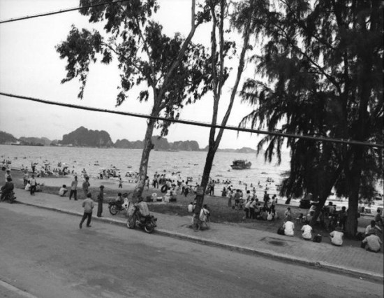 Bãi biển Hạ Long.