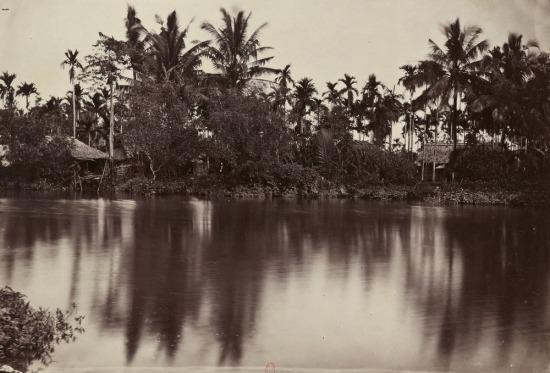 Bờ sông Sài Gòn.