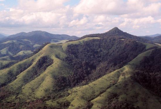 Một cái nhìn toàn cảnh từ đèo Mang Yang.