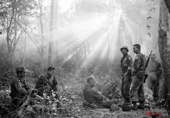Ánh nắng xuyên qua tán lá rừng rậm rạp bao quanh Bình Giã, cách Sài  Gòn 40 dặm về phía Đông, đầu tháng 1/1965. Lúc này lính VNCH, có cố vấn Mỹ đi kèm, đang nghỉ ngơi sau một đêm căng thẳng, ẩm ướt và lạnh lẽo với cuộc phục kích bất thành của quân Giải phóng. Khoảng một giờ sau, khi khả năng đột kích ban đêm của đối phương không còn, lính VNCH lại bắt đầu một ngày dài nóng nực săn đuổi du kích Cộng sản trong rừng rậm.