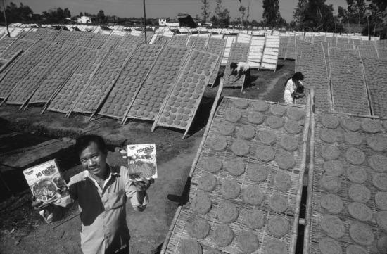 Ông Nguyễn Văn Gòn, giám đốc một nhà máy sản xuất mỳ xuất khẩu của nhà nước đóng tại quân Tân Bình, TP HCM, đang cầm trên tay một số sản phẩm được phơi khô bằng ánh nắng mặt trời. Khoảng 1 tấn rưỡi mỳ được chuẩn bị từ đêm và phơi trong khoảng 4 tiếng ban ngày vào mùa khô.