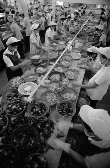 Khung cảnh trong phân xưởng của nhà máy Thực phẩm đông lạnh số 1, nơi chế biển các sản phẩm hải sản xuất khẩu với quy mô 3.300 công nhân. Vào năm 1987, nhà máy đã bán được 2.400 tấn cá cho Nhật Bản và Australia, tổng giá trị 21 triệu USD.