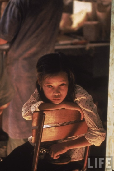 Vào ngày định mệnh, Tròn vào rừng với ý định hái rau rừng để đem ra chợ bán. Em còn hứa với hai đứa em trai và em gái rằng sẽ cho tiền mua quà sau khi bán được rau. Cô bé không biết rằng bi kịch đau đớn sắp xảy đến với mình.