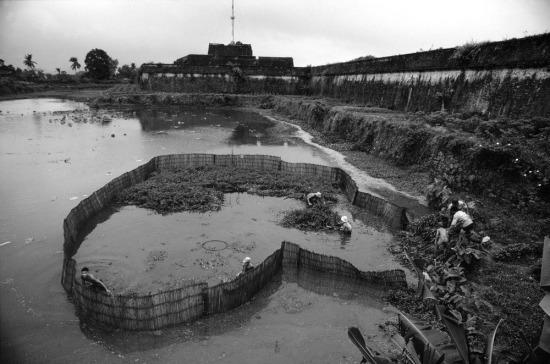 Một khoảng ao gần Hoàng thành Huế được khoanh lại để nuôi cá.