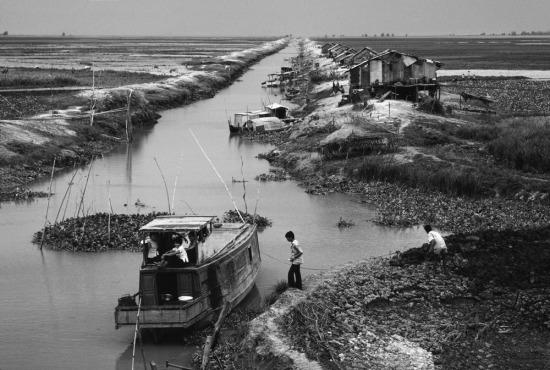 Sau cuộc chiến, nhiều người dân làng bị li tán đã trở về miền quê của mình, nơi hứng chịu sự tàn phá nặng nề của chiến tranh.