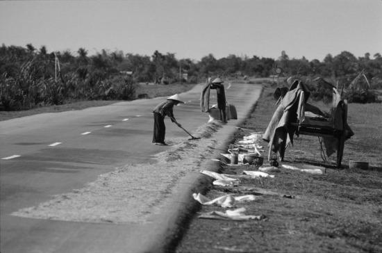Các mặt phẳng sạch sẽ, kể cả mặt đường Quốc lộ 1 thường được người dân tận dụng để phơi thóc lúc trời nắng.