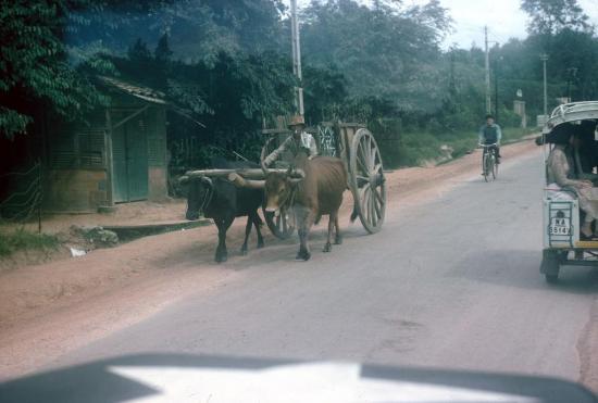 Trên một con đường ở Thủ Đức, ngoại vi Sài Gòn.
