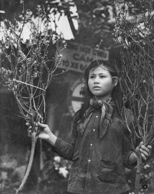 Thiếu nữ cầm những cành đào ở Hà Nội ngày giáp Tết.