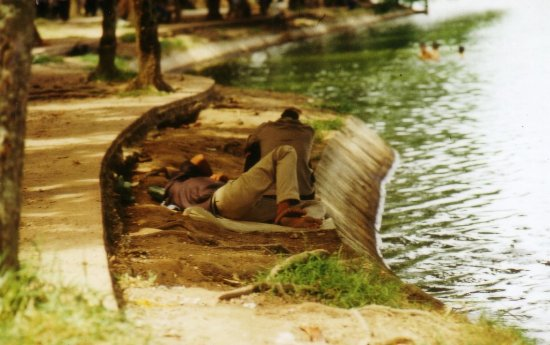 Người ngủ, người ngồi nghỉ, người khác thì bơi lội dưới hồ.