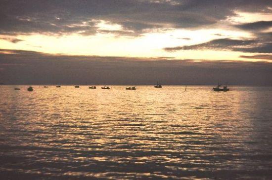 Những chiếc thuyền câu buổi đêm.