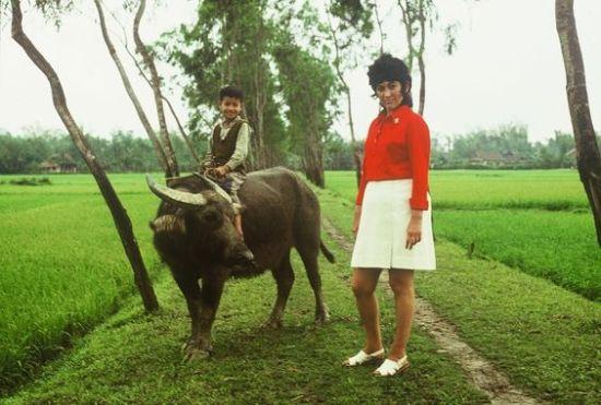 Những chú bé cưỡi trâu có lẽ là hình ảnh dễ thương nhất ở Việt Nam.