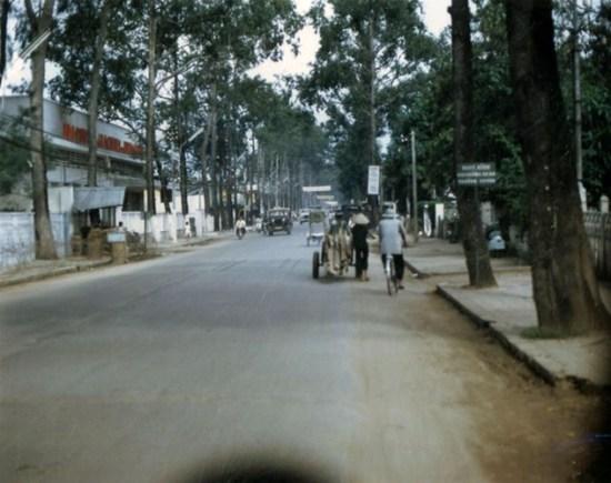 Đường Nguyễn Trãi.