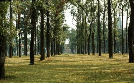 Công viên Tao Đàn.
