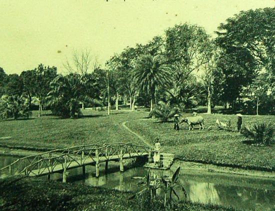 Vườn Bách Thảo Hà Nội.