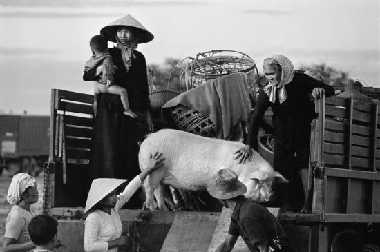 Người dân mang theo những tài sản quý giá nhất để di tản khỏi vùng chiến sự, 1967.