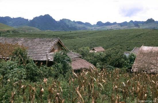 090.Sơn La