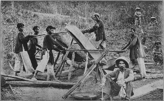 Những người thợ xẻ gỗ ở Bắc Kỳ.