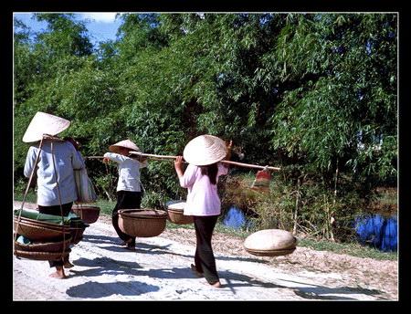 Chú thích của Steve Brown trên Flickr cá nhân của mình về bức ảnh: Những người phụ nữ Việt Nam đang trở về nhà từ khu chợ trong làng Thủy Phú.