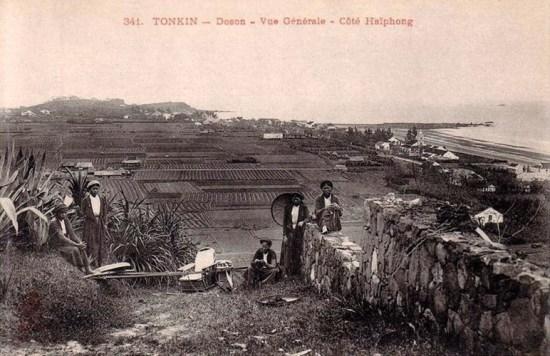 Một góc Đồ Sơn với các cánh đồng lúa.
