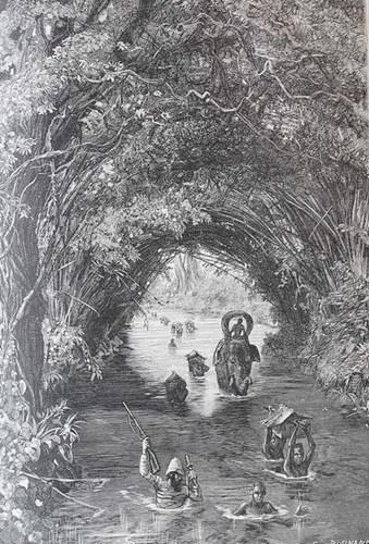 Dòng sông chảy dưới tán rừng rậm.