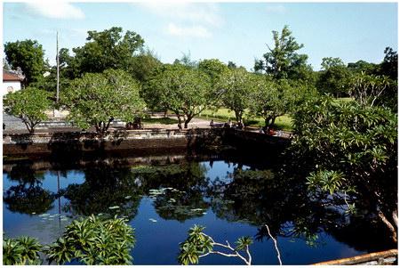 Chú thích của Steve Brown trên Flickr cá nhân của mình về bức ảnh: Đây là một trong hai ao nằm giữa Ngọ Môn và điện Thái Hoà trong khu vực đại nội của Hoàng thành Huế. Bức ảnh được tôi chụp từ phía trên của Ngọ Môn.