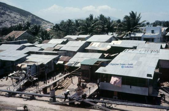 Những ngôi nhà ở ấp Trường Tây.