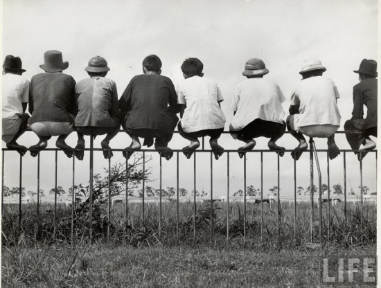 """Những người đàn ông """"đậu"""" như chim trên hàng rào để xem đua ngựa ngày chủ nhật ở trường đua ngựa Sài Gòn."""