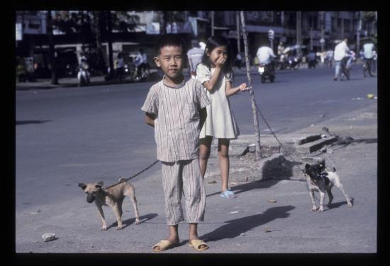Hai em bé dắt chó đi dạo gần cầu chữ Y.