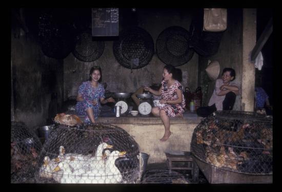 Khu bán gà vịt trong chợ Bến Thành.
