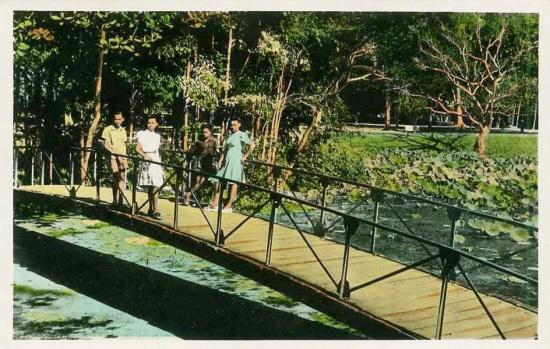 Với trẻ em miền Nam thời xưa, Thảo Cầm Viên là điểm đến mơ ước mỗi khi được lên Sài Gòn.