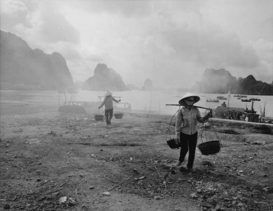 Những người thợ than bên bờ vịnh Hạ Long.