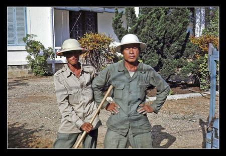 Chú thích của Steve Brown trên Flickr cá nhân của mình về bức ảnh: Đây là những người làm vườn Việt Nam tại thành phố Huế. Họ rất tự hào về công việc mà mình làm.